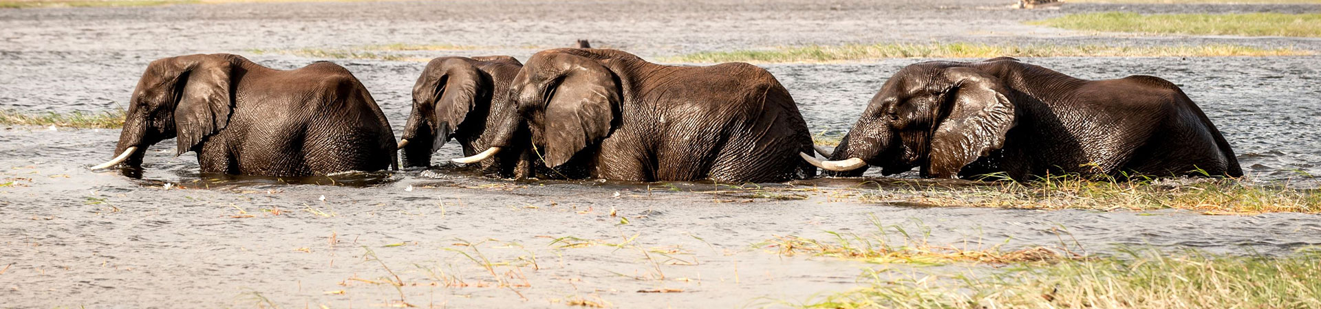 12-Days-Kenya-family-safaris-and-beach