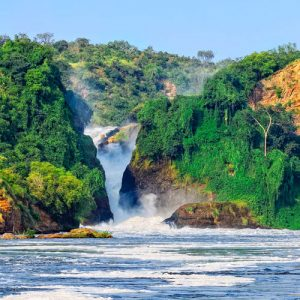 4-Days-Murchison-falls-Safaris-and-Chimpanzee-Trekking