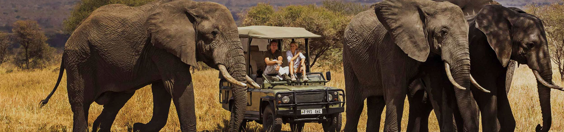 5-Day-Tanzania-Luxury-Safaris.