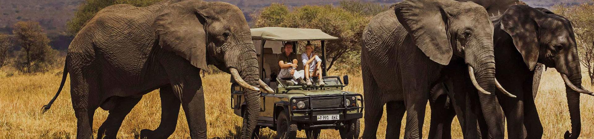 5-Day-Tanzania-Luxury-Safaris.