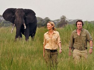 8 Days Tailor Made Tanzania Safari big 5 & Zanzibar Beach Holiday Tour