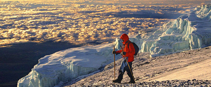 8-Days-Climbing-Kilimanjaro-via-lemosho-Route