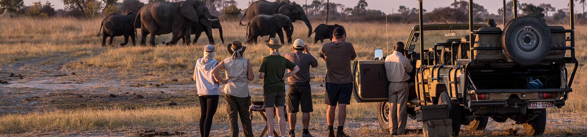 9-Days-Family-Safari